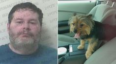 Veteran that saved distressed dog locked inside hot car is facing charges! Voice your outrage now!   YouSignAnimals.org