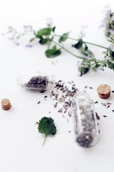 All about lavender and a DIY recipe!