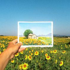 а вот подсолнухи мной понимаются на раз, очень мои цветы :)) а вообще, находясь в провансе - все время кажется, будто попала на открытку, такое все классически-красивое... // #sunflowers are very my flowers :) there is no problem to paint them :) in #Provence everything is so classicaly beautiful! it's like I am in postcard :) #поле#акварель#прованс#франция #рисовать#цветы#подсолнухи#art_we_inspire #valensole#field #provence#france#drawing#paint#flowers #watercolor #topcr...