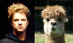 Funny Matt Cain look alike