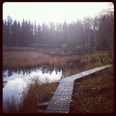 Lost path in Luosto lake...