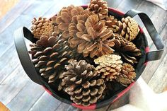10 Gorgeous Christmas Pine Cone Crafts to Decorate With Christmas Pine Cones, Christmas Mason Jars, Pine Cone Decorations, Christmas Decorations, Easy Crafts, Crafts For Kids, Scented Pinecones, Christmas Crafts For Gifts, Pine Cone Crafts