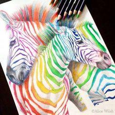 how to draw a realistic zebra body