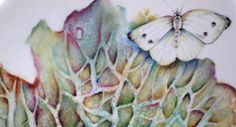 Cabbage and cabbage white butterfly painted on China bowl by Mark Jones