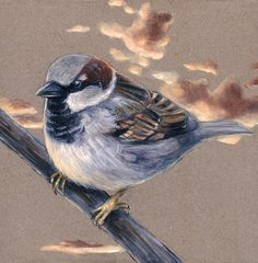 Sparrow in the Clouds; gouache on toned paper mounted on birch board / 8x8 / Montana Black