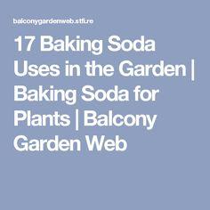 17 Baking Soda Uses in the Garden | Baking Soda for Plants | Balcony Garden Web