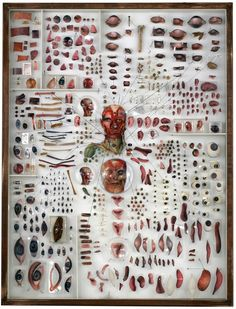 Incredible Mixed Media Collages Blend Science And Art - At First Glance It Looks Like New York Based Artist Michael Mapes Actually Chopped Up Body Parts To Produce His Recent Mixed Media Art According To His Bio The Artist Likes To Mask The Artist Photomontage, Collages, Petri Dish, Paint Samples, Fabric Samples, A Level Art, Anatomy Art, Human Anatomy, Assemblage Art