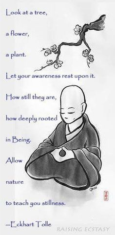 Real Masters of Stillness, they're all around us. :)