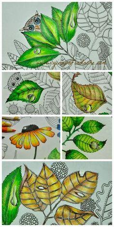 Atelier Gina Pafiadache: Desenhando gotas nos livros de colorir. Technique to apply dew drops in a pencil painting.