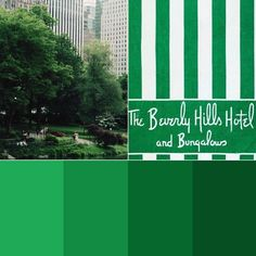 click through to our post for green palette hex codes, wallpapers, and more! Beverly Hills Hotel, The Beverly, Green Colour Palette, Color Palettes, Forest Green Color, Aesthetic Pictures, Bungalow, Hex Codes, Places