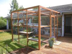 """Cat Owners Are Building Outdoor """"Catio"""" Spaces for Their Beloved. Informations About Cat Owners Are Building Outdoor """"Catio"""" Spaces for Their Beloved Pet Diy Cat Enclosure, Outdoor Cat Enclosure, Catio Ideas For Cats, Cat Safe Plants, Cats Outside, Cat Kennel, Cat Run, Cat Playground, Outdoor Playground"""