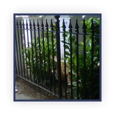Railings Victorian and Edwardian