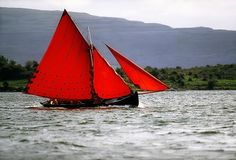 Galway Hookers, Kinvara, Co Galway Photograph