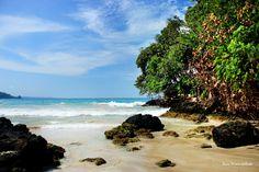 Red Frog Beach!! Isla Bastimentos, Bocas del Toro, Panamá