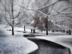 Piedmont Park, 2010.