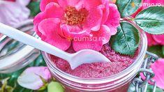 Rose, Sugar, Pink, Roses