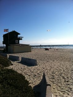 Mission Beach, SD Mission Beach, Beach Babe, Sd, Opera House, Community, Building, Water, Travel, Outdoor