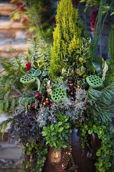 fabulous textures of greenery in a copper pot - holly, cedar, evergreen, lotus flower seed pods, creeping jenny, juniper berries etc.