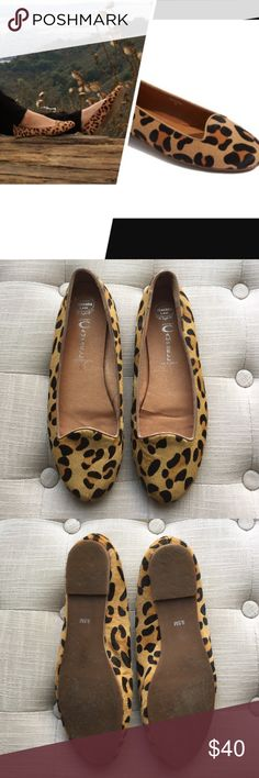 Jeffrey Campbell Mention Flat Classic staple leopard patterned calf hair flat by Jeffrey Campbell. Calf hair upper, leather lining, synthetic sole. Worn twice, some signs of wear on back right heel (note pictures) but not noticeable at all when wearing. Size 9.5, fits true to size. Jeffrey Campbell Shoes Flats & Loafers