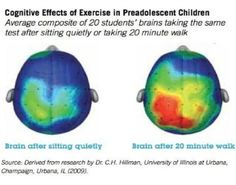 Why Students Need Brain Breaks at School (look at the changes in a child's brain after activity!) by Real Mom Nutrition
