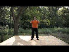 Yi Quan - Zhan Zhuang - Qi Gong - Standing meditation