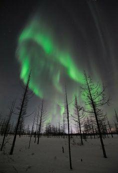Auroras boreales. Norilsk,Taimyr, Rusia. 22 de enero de 2012 | Foto: Pavel Kantsurov