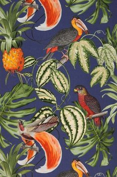 Erismann Wallpaper Rolls & Sheets Home, Furniture & DIY Bird Wallpaper, Wallpaper Samples, Vinyl Wallpaper, Wallpaper Roll, Pattern Wallpaper, Cloakroom Wallpaper, Wallpaper Lounge, Motif Tropical, Tropical Birds