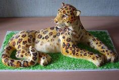 Cheetah Cake i'll never be able to do that but it is cool!