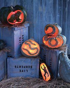 Halloween pumpkins jack o lanterns on pinterest pumpkin carvings - Extraordinary accessories for halloween decoration with pumpkin eating another pumpkin carving ...
