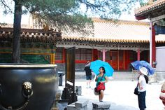 Courtyard of one of the palaces in the Forbidden City.