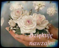 Floral Wreath, Wreaths, Flowers, Plants, Album, Blog, Polish, Door Wreaths, Flora