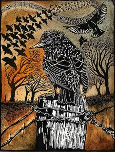 Roosting Starlings woodcut by Ian MacCulloch