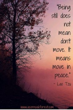Yoga Quotes : Being still does not mean don't move. It means move in peace. Yoga Mantras, Yoga Quotes, Lao Tzu Quotes, Words Quotes, Life Quotes, Taoism Quotes, Sayings, New Age, Meaningful Quotes