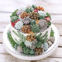 Most Beautiful Edible Creations You Won't Believe You Can Actually Eat: Don't let this wedding cake fool you. It looks like a real succulent garden, but it's edible! Pretty Cakes, Beautiful Cakes, Amazing Cakes, Buttercream Flowers, Buttercream Cake, Cake Boss, Bolo Tumblr, Bolo Floral, Grolet
