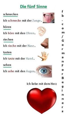 German #learnspanishwords