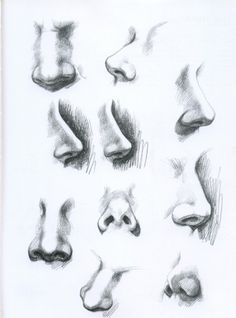 Noses in different angles