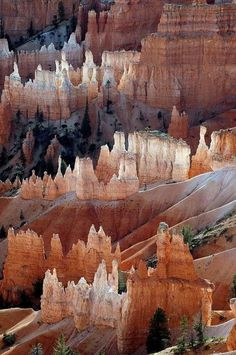 Bryce Canyon National Park, Utah.