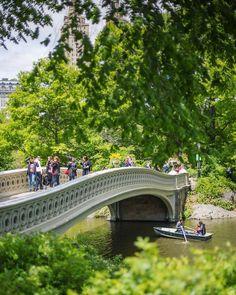 """3,101 curtidas, 17 comentários - ! IG ⊕ NEW YORK ® #IG_NYCITY (@ig_nycity) no Instagram: """"presents  I G  O F  T H E  D A Y  P H O T O  @jakobdahlin T H E M E  Central Park F E A T U R E D…"""""""
