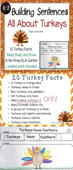 Building Sentences   Turkey facts for kids   Printables   Thanksgiving   Centers   Word Word   Leveled work   No-prep   Writing   Kindergarten   1st grade   2nd grade