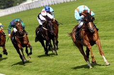 Once you know your stuff, you'll be able to #plan_ahead and bet on the outcomes of #horse_racing_tomorrow, whether that's 'tomorrow tomorrow' or tomorrow in several months time. His type of #betting_strategy is known in the industry as an ante-post wager.