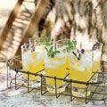 1 large fresh pineapple (4c) 1 1/4c sugar fresh lavender or rosemary and 1/4 fresh lemon juice - OMGooooodness