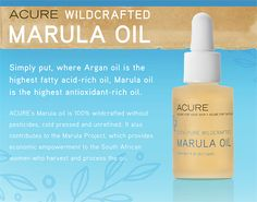 Acure's Marula oil is wildcrafted without pesticides, cold-pressed, and unrefined. Learn more about this antioxidant rich oil from this blog post!