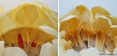 DIY Beautiful Giant Paper Peony - The Idea King