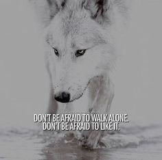 Don't be afraid to walk alone. Don't be afraid to like it.