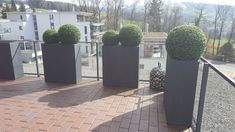Balcony Ideas, Plants, Outdoor, Environment, Planting, Weather, Lawn And Garden, Switzerland, Outdoors