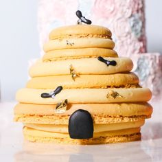 Nutmeg & Honeybee