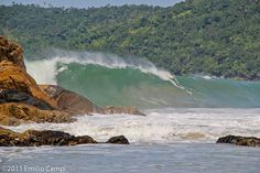 litoral  brasileiro............