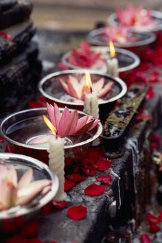 Flower and Light offering (Bodhgaya, India). Image by Oliver Adam