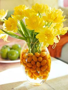 Kumquats in a vase of water make a unique base for stems of yellow tulips or other spring flowers.