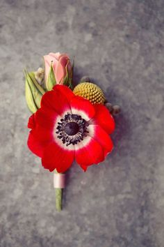 red anemone boutonniere with billy ball and pink rosebud Boutonnieres, Anemone Bouquet, Groomsmen Boutonniere, Ranunculus, Poppy Bouquet, Poppy Red Wedding, Floral Wedding, Wedding Bouquets, Party